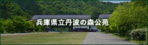 兵庫県立丹波の森公苑