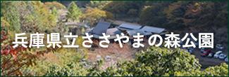 兵庫県立ささやまの森公園