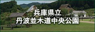 兵庫県立丹波並木道中央公園