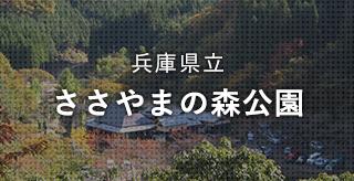 兵庫県立 ささやまの森公園